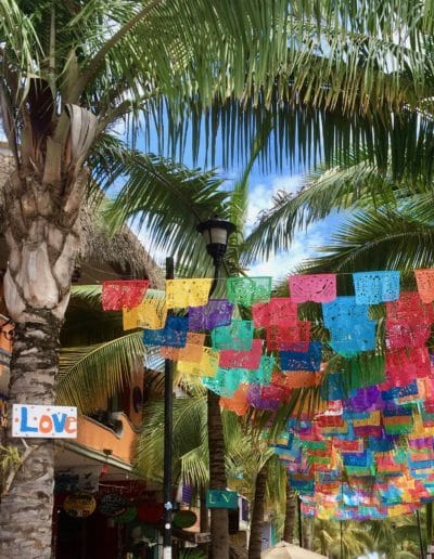 Travel Sayulita Flags
